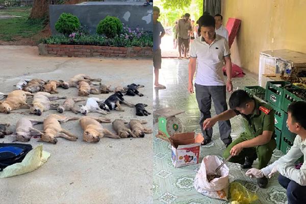 Cặp tình nhân dùng chất độc Xyanua trộm gần nửa tấn chó