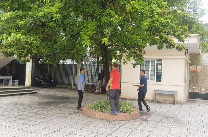 Hà Nội tổng rà soát cây trong phố